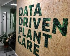 At www.spiio.com we do Data-Driven Plant Care And this is our office entry.