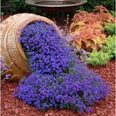 Love this idea!  The use of ceramic urn works in great with my Tuscan/Mediterranean