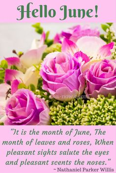"""""""It is the month of June, The month of leaves and roses, When pleasant sights salute the eyes and pleasant scents the noses."""" ~ Nathaniel Parker Willis  #quote"""