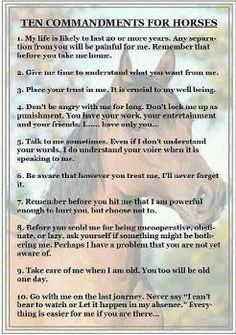 ten commandments for horses