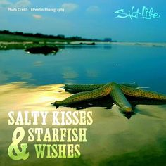 ⭐⭐⭐ Salty kisses and starfish wishes!