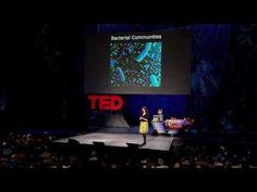 Bonnie Bassler: The secret, social lives of bacteria