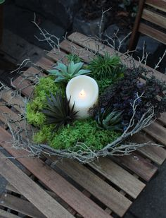 This RTC twig bowl filled with moss and succulent picks totally gives a ferngully feel to this backyard patio. Makes you just want to sit down with a glass of mulled wine and enjoy the misty weather 🌲 #rtcfloral #moss #fergully #candle #patiodesign #interiordesign #succulent #succulents