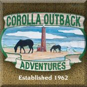 Corolla Beach, NC - wild horses    Drive a vintage Land Cruiser into the outback past the road's end. An Outer Banks, NC adventure tour you'll never forget!