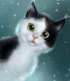 Why Do Cats Suddenly Stare at the Walls, Nothing, or Space I Love Cats, Crazy Cats, Cool Cats, Animals And Pets, Cute Animals, Photo Chat, Warrior Cats, Cat Drawing, Beautiful Cats