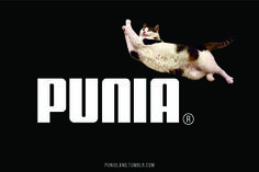 #cat #funny #puma #logo #fake logo #typography #punioland #sport #workout #running #street #style #shoes