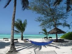 Zanzibar Archipelago, Tanzania: hammocks between trees #honeymoon #travel
