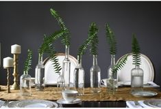 simple fern clear bottle centerpieces, could sub a single flower instead of the fern