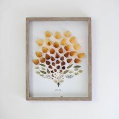 a new bloom - design, food, style, diy: DIY Dried Flower Shadow Box + The Best Gift from the husband