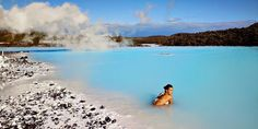 Iceland - Blue Lagoonhttp://ow.ly/pA4lh