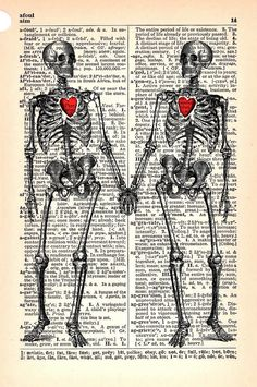 My Heart Still Beats For You Anatomy Skeletons In by StayGoldMedia