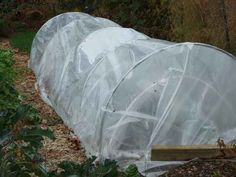 Create a low tunnel to extend the growing season and harvest leafy greens and fresh vegetables through the holidays and well into winter.