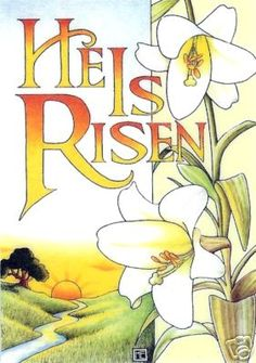 He is risen!   Lily of the Valley, Bright and Morning Star!