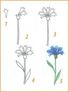 Поэтапное рисование цветов 4