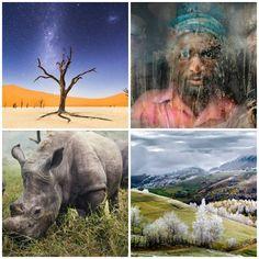 Show de imagens: conheça as fotos vencedoras do concurso da National Geographic em 2015 - Fotos - R7 Viagens