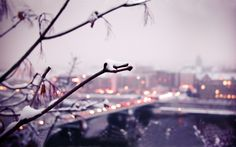 Beautiful Winter Pictures Tumblr Images amp; Pictures Becuo