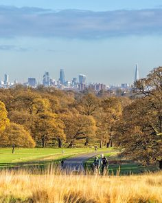 Richmond Park, London, England