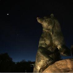 Goodnight, moon. Goodnight, Bears. Goodnight, Baylor everywhere!
