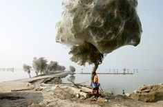 8  An unexpected side-effect of the 2010 flooding in parts of Sindh, Pakistan, was that millions of spiders climbed up into the trees to escape the rising flood waters; because of the scale of the flooding and the fact that the water took so long to recede, many trees became cocooned in spiders webs. People in the area had never seen this phenomenon before, but they also reported that there were less mosquitos than they would have expected, given the amount of standing water that was left…