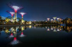 Gartenkomplex Gardens by the Bay in Singapur