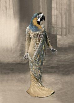 Queen Azura - Vintage Macaw Print - Anthropomorphic - Altered Photo - Bird Art - Parrot Print - Digital Art - Whimsical - Unique Bird Art
