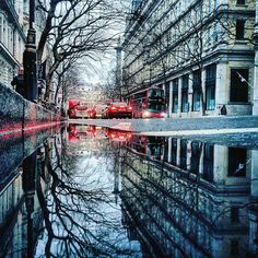 I Travel The World To Photograph The Parallel Worlds Of Puddles With My Smartphone (New Pics)