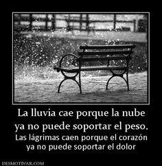 La lluvia cae porque la nube ya no puede soportar el peso. Las lágrimas caen porque el corazón ya no puede soportar el dolor