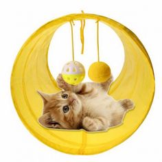 Cheap cat tunnel, Buy Quality cat play tunnel directly from China Suppliers: Funny Pet Cat Tunnel 2 Holes Cat Play Tubes Balls Collapsible Crinkle Kitten Dog Toys Puppy Ferrets Rabbit Play Cat Tunnel Tubes Toy Puppies, Small Puppies, Kittens Playing, Cats And Kittens, Pet Cats, Cat Safe Plants, Cat Tunnel, Tunnel Tent, Funny Toys
