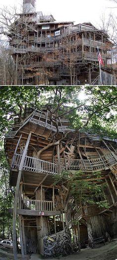 Horace Burgess criou uma casa tão perto do céu quanto poderia ser: com cerca de 30 metros de altura, a construção se apoia num carvalho de 24 metros de altura e 4 de diâmetro. Seis outras árvores sustentam a casa. A maioria de seus materiais são pedaços de madeira reciclados. A casa tem 10 andares. Horace nunca mediu seu tamanho, mas estima que tenha cerca de 2.440 a 3.660 metros quadrados. Ela é feita de mais ou menos 258.000 pedaços de madeira. Horace acredita que gastou cerca de 19.000…