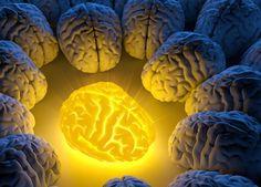 How WHOLE Turmeric Heals The Damaged Brain   Health Impact News