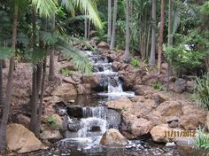 Kershaw Gardens, Rockhampton: See 49 reviews, articles, and 3 photos of Kershaw Gardens, ranked No.8 on TripAdvisor among 28 attractions in Rockhampton. Natural Light, Trip Advisor, Attraction, Road Trip, Articles, Gardens, Holidays, Portrait, Water