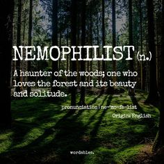 7 beautiful words only nature lovers will understand unique words, love words, unusual words The Words, Weird Words, Cool Words, Unusual Words, Unique Words, Nature Words, Nature Quotes, Pretty Words, Beautiful Words