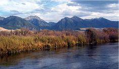 Armstrong Spring Creek