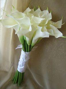 love calla lilies :)