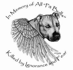 In memory of all Pit Bulls killed by ignorance and fear.