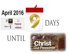 They follow the Lamb wherever he goes: Christ Our Passover