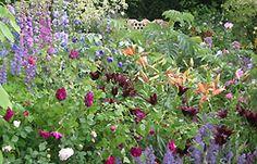 Cottage garden planting, BBC