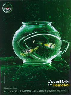 L'esprit bière - Aquarium