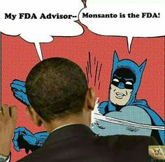 FDA in bed with Monsanto