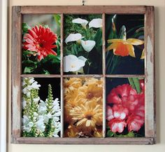 Get Scatty: Old Window Frames for Picture Frames