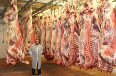 halal meat kosher lawful meat animal stunning slaughtering danish act of ban on religious slaughtering halal and kosher in denmark. Danish legislation on halal slaughter Pig Farming, Fish And Seafood, Denmark, Beef, Knights, Group, Google Search, Projects, Owl Bird