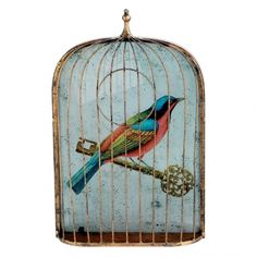 A blue and red bird picture in a cage