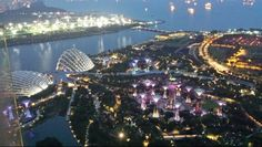 Gardens by the Bay - view from Sky on 57, Marina Bay Sands #Singapore