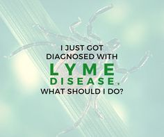 Welcome to the school of Lyme. 6 tips for those newly diagnosed with Lyme disease. by Jennifer Crystal Every day, I receive emails from people who have recently been diagnosed with Lyme disease. Chronic Illness, Chronic Pain, Fibromyalgia, Lyme Disease Tick, Autoimmune Disease, Invisible Illness, Alternative Medicine, Along The Way, 6 Years
