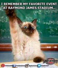 Back to school today and we want to know.... what was your FAVORITE event or game you have attended here at Raymond James Stadium? #everlastingmemories #backtoschool #tampa #games #events #concerts @Tampa Bay Buccaneers @USF Athletics @Outback Bowl @Monster Jam #school #funny #humor #cat