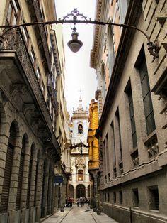 Old Town Rio de Janeiro (by Marcia Rosa ())