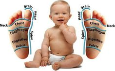 Baby foot reflex chart. You can apply Young Living Essential Oils to babies feet. #younglivingessentialoils by kristina