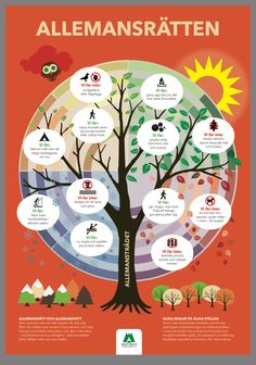Teaching Biology, Teaching Tips, Kids Barn, Swedish Language, Daycare Crafts, Geography, Good To Know, Kindergarten, Preschool