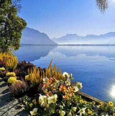 Montreux | Switzerland Tourism Switzerland Tourism, Paradise, White Gold, Urban, Adventure, Mountains, Landscape, City, Artist