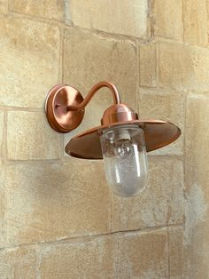 With an elegant swan neck and warm copper finish, our outdoor wall light will perfectly illuminate your outdoor space. With a glass bulb casing, with a unique bubbled finish. Outdoor Wall Lighting, Garden Inspiration, Garden Ideas, Swan, Wall Lights, Copper, Bulb, Glass, Appliques